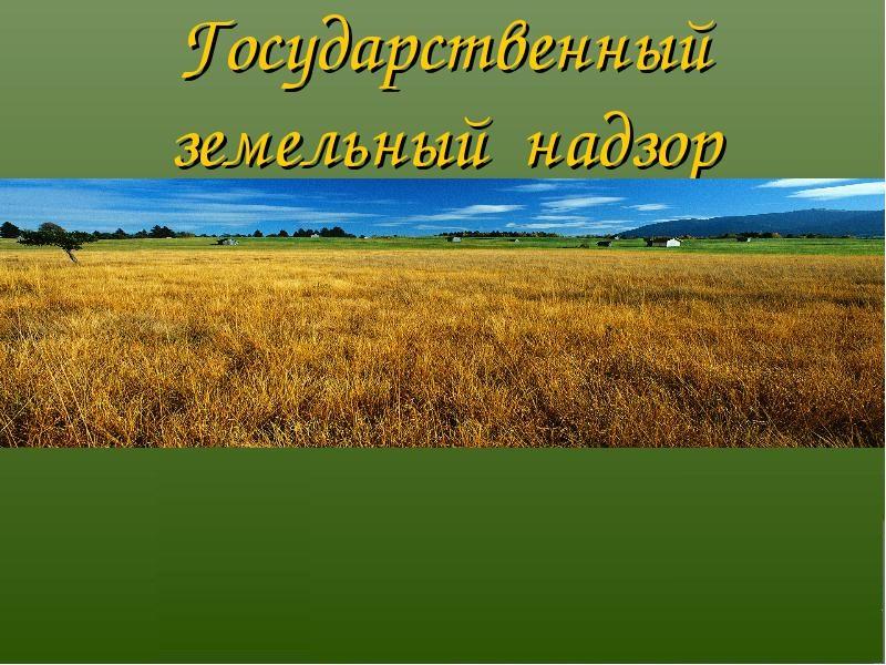 Путин дал курским аграриям надежду